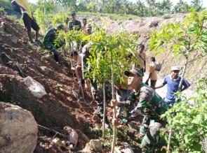 Cegah Bencana Longsor, Tni Ajak Masyarakat Perbatasan Tanam Pohon