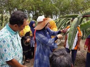 Kunjungi BPPM AA, UIR dan Dharma Wanita Terinspirasi Bangun Agrowisata
