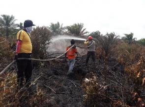 Tni, Polri dan Manggala Agni Terus Berupaya Padamkan Api di Lahan Gambut