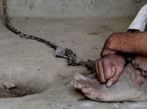 Ditangkap, Orang Gila Bakar Cagar Budaya di Inhu