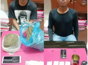 2 Gembong Narkoba Jenis Daun Ganja Kering Diringkus Satresnarkoba Polres Kampar