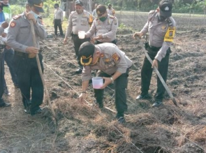 Dukung Program Ketahanan Pangan, Polsek Tapung Tanam 5000 Bibit Jagung dan 2500 Bibit terong  Tapung