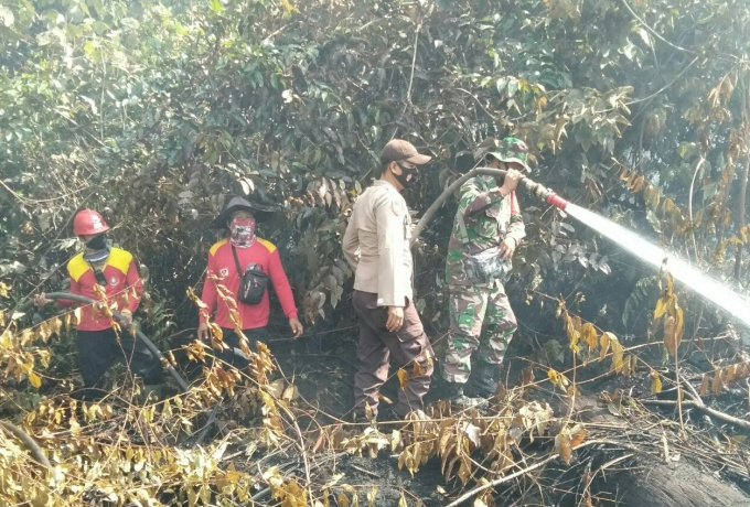 TNI Polri Bersama Masyarakat Berjibaku Padamkan Api Kebakaran Lahan Gambut