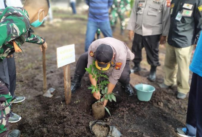 Polsek Tapung Bersama Tni dan Masyarakat Tanam Pohon, Dalam Rangka Hari menanam Pohon Nasional
