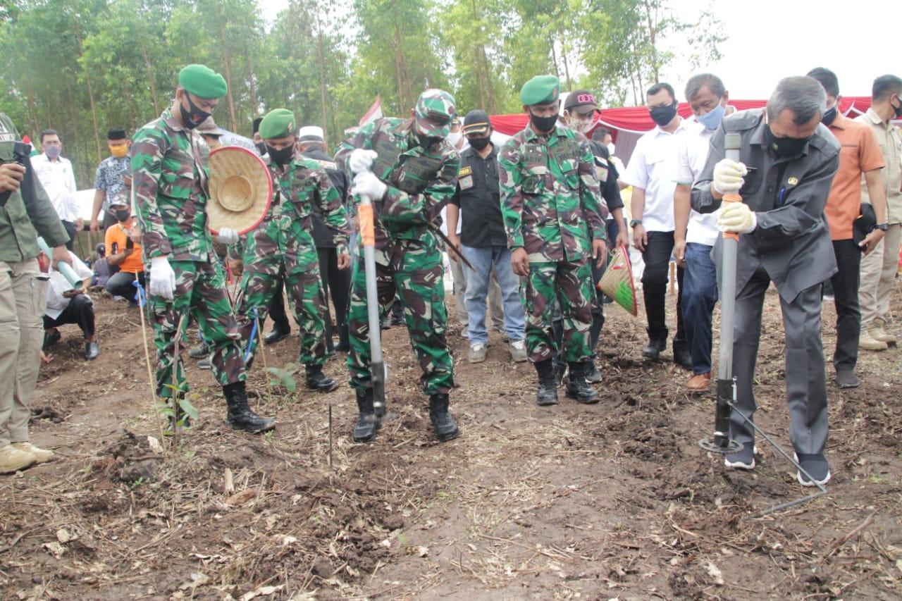 Gubernur, Dandrem 031/WB, Kapolda Riau, Tanam Perdana Jagung Program Kodim 0313/KPR Ketahanan Pangan