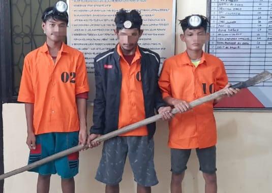 Nyuri 70 Tandan Buah Sawit, 3 Pemuda ini Diamankan Warga Lalu Diserahkan ke Polsek Tapung
